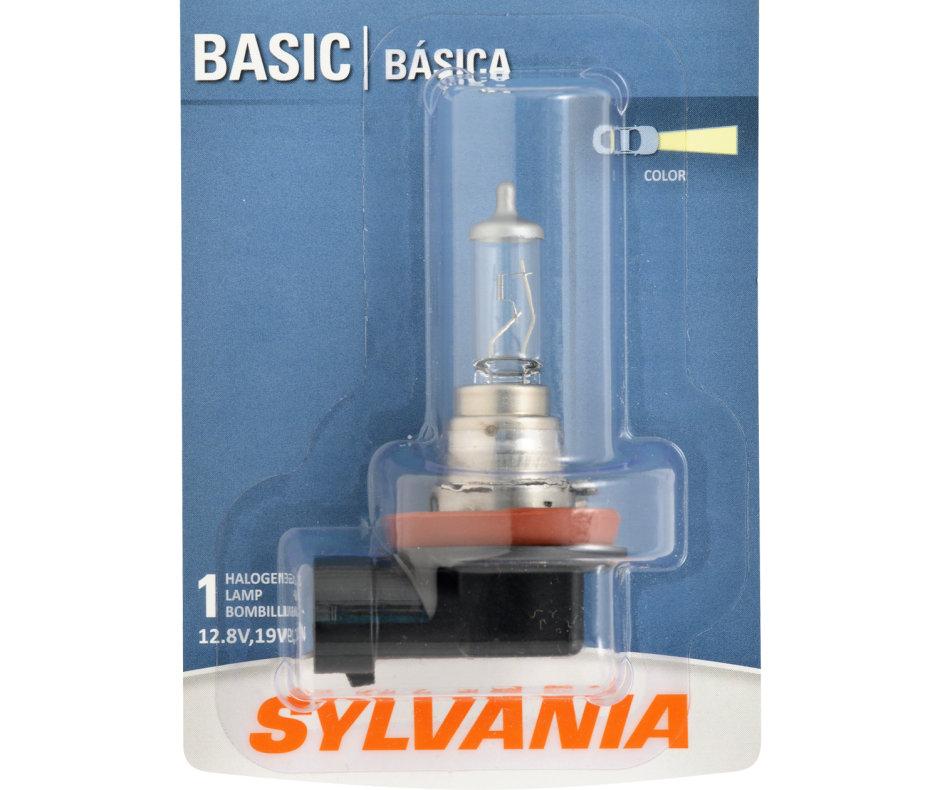 H16 Bulb - Basic