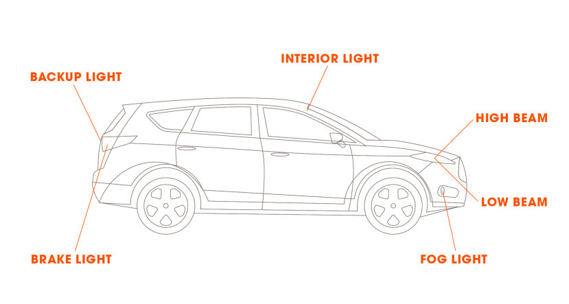 Find what bulb fits your vehicle