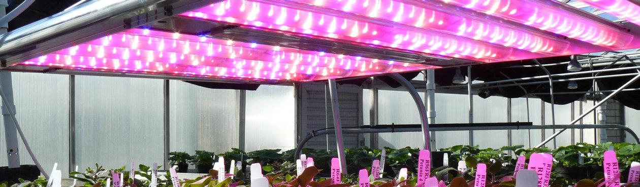 Cezos GrowEmity 120 Horticulture Kit