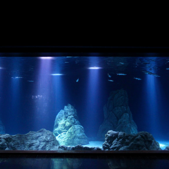 OSRAM imitates lighting environment of the sea
