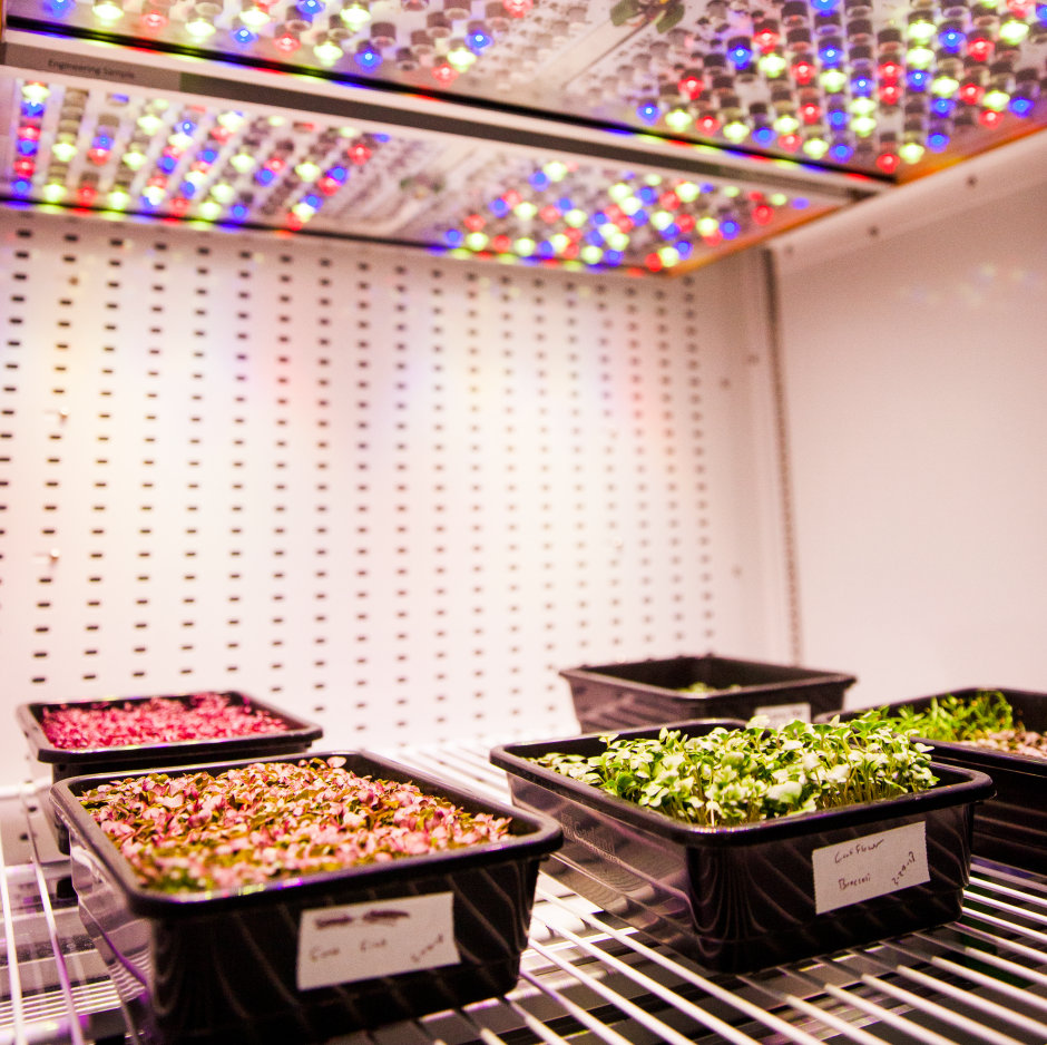 Phytofy Horticulture LIghting System
