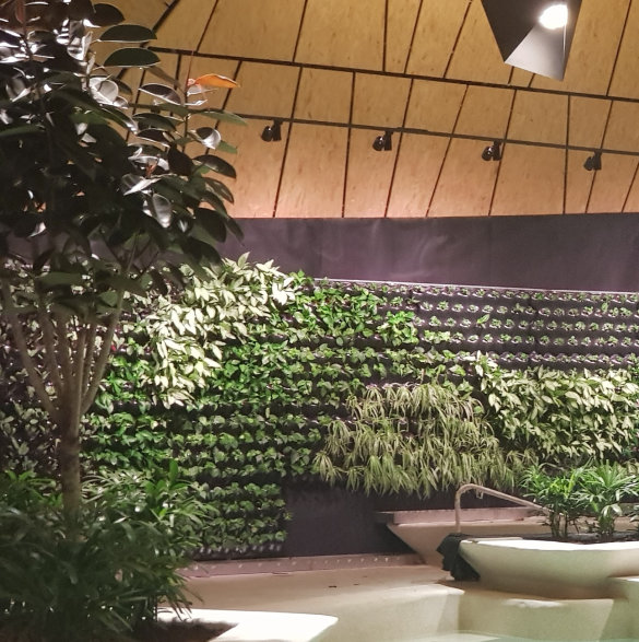 Indoor Wall Garden - TERMALIJA Family Wellness, Terme Olimia