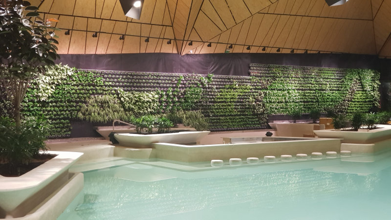 Indoor Wall Garden - TERMALIJA Family Wellness, Terme Olimia