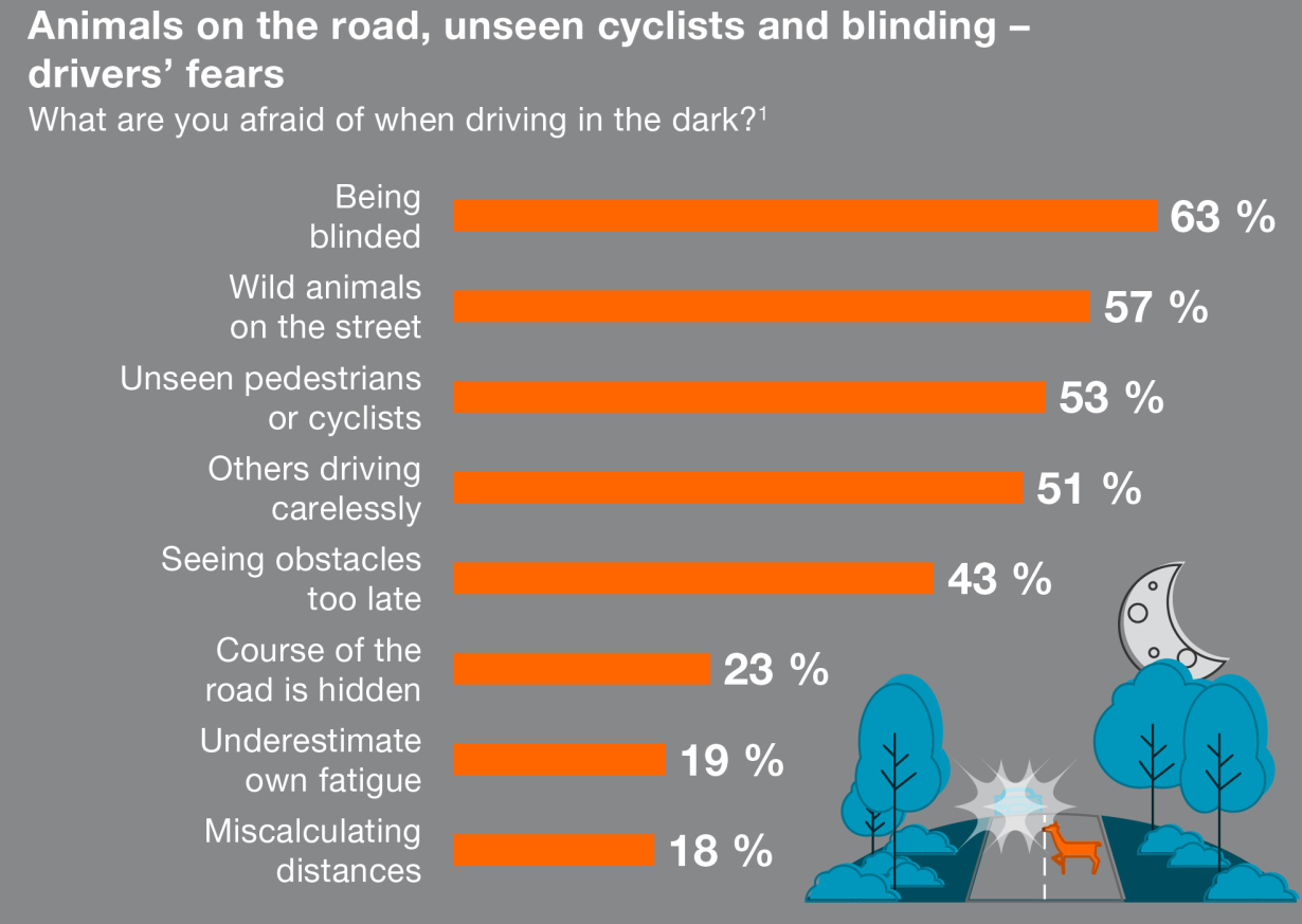 drivers fear being blinded, wild animals on the streets or pedestrians that they don't see
