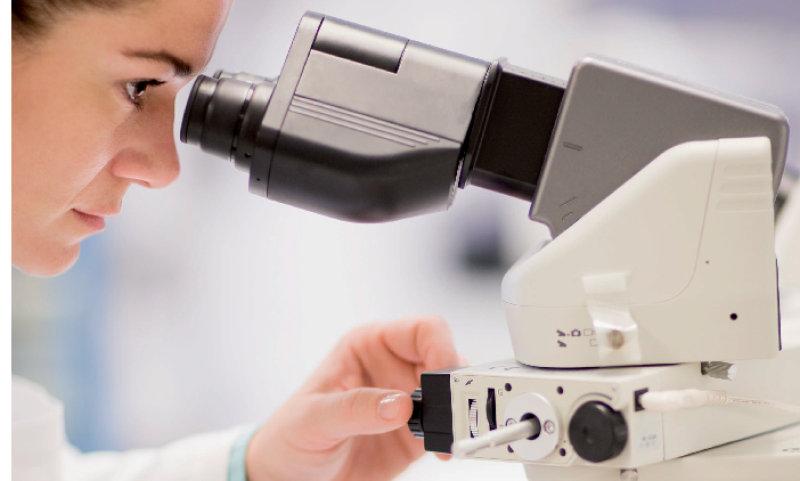 Mikroskopie und Blutanalyse
