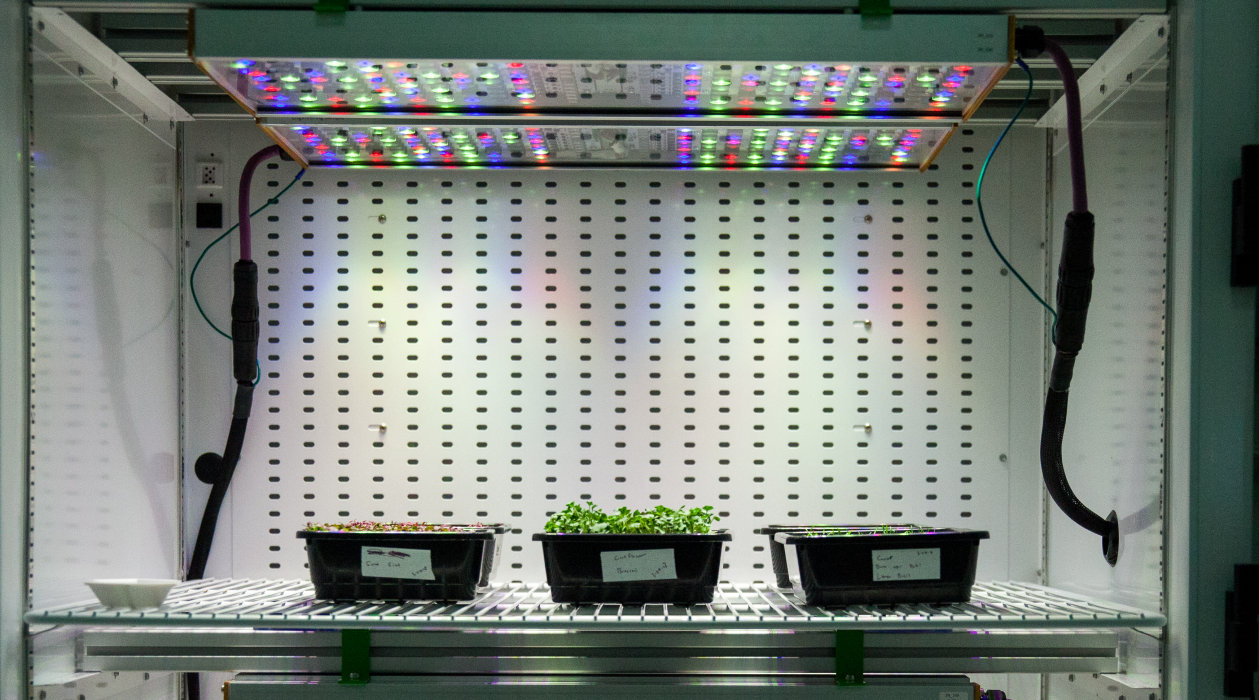Osram's Phytofy RL connected horticulture research lighting system